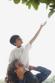 Father with son on shoulders, son reaching up for leaf - Manoj Adhikari