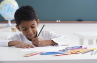 boy concentrates on schoolwork - Alex Mares-Manton