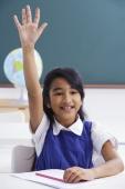 girl raises hand in class - Alex Mares-Manton