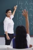 teacher at chalkboard, girl raises hand - Alex Mares-Manton