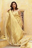 woman in gold sari - Vivek Sharma
