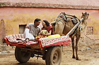 couple on camel cart - Vivek Sharma