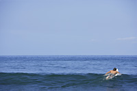 man on surf board, surfing out to sea - Yukmin