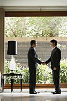 businessmen shaking hands - Alex Mares-Manton