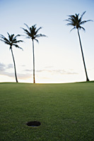 golf course during sunset - Yukmin