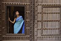 young woman in sari at window inside huge wooden doorway - Alex Mares-Manton
