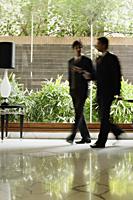 two businessmen, hotel lobby - Alex Mares-Manton