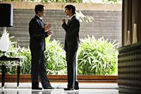 businessmen in hotel lobby - Alex Mares-Manton