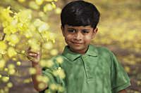 Little boy touching branch - Vivek Sharma