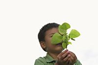 Little boy holding seedling tree - Yukmin