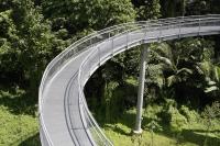 Bridge built high among the trees - Yukmin