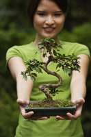 Young woman holding up bonsai tree - Nugene Chiang