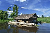 Nipa house on marsh, Agusan Marsh, Philippines - OTHK
