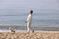 Older woman walking dog. - Yukmin