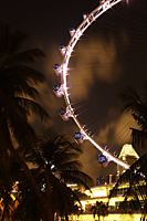 Night view of Singapore Flyer - Nugene Chiang