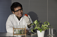 scientist looking at a tomato - Yukmin