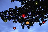 colored lanterns at night hanging from tree - Alex Mares-Manton