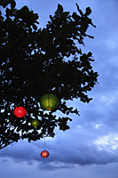 colored lanterns hanging from tree at night - Alex Mares-Manton