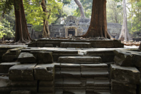 stone steps with temple in back ground, Angkor Wat - Alex Mares-Manton