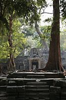 steps leading up to ruins of Angkor Wat - Alex Mares-Manton