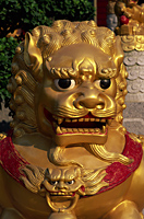 China,Hong Kong,New Territories,Sha Tin,Ten Thousand Buddha Monastery,This monastery has over 12,800 Buddha Statues,Detail of Lion Statue - Travelasia