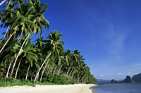 Philippines,Palawan,Bascuit Bay,El Nido,Beach Scene - Travelasia