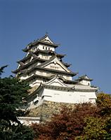 Japan,Himeji,Himeji Castle - Travelasia