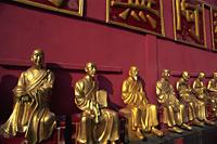 China,Hong Kong,New Territories,Sha Tin,Buddha Statues in theTen Thousand Buddha Monastery,This monastery has over 12,800 Buddha Statues, - Travelasia