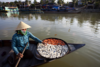 Vietnam,Hoi An,Boat Woman and Dried Products - Travelasia