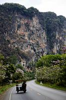 Thailand,Krabi,Karst Cliff - Travelasia