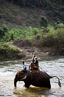 Thailand,Chiang Mai,Elephant Camp,Tourist Elephant Trekking - Travelasia
