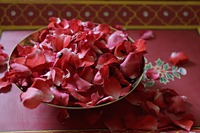 Red rose petals in bronze bowl - Alex Mares-Manton