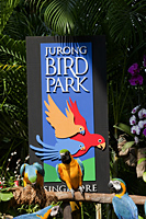 Singapore,Jurong Bird Park - Travelasia
