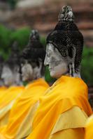 Profile of stone Buddhas at Wat Yai Chaya Mongkol Temple, Thailand - Alex Mares-Manton