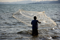 Man throwing net into the sea, Thailand - Yukmin