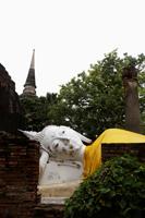 Stone Buddha at Wat Yai Chaya Mongkol Temple, Thailand - Alex Mares-Manton