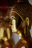 Profile of gold Buddha statue at Wat Pho, Thailand - Alex Mares-Manton