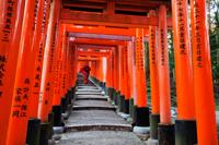 woman in red Kimono at Fushimi Inari Taisha Shrine,Tunnel of Torii Gates. - Travelasia