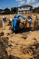 Rice Threshing Japan, Nagano Prefecture - Travelasia