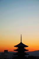 Toji Temple at Sunset. Kyoto, Japan - Travelasia