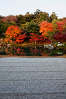 Autumn Leaves in the Landscape Garden. Kyoto, Japan - Travelasia