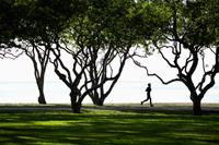 Man jogging in park by the ocean - Yukmin