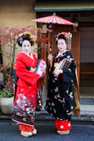 Japanese woman dressed in traditional clothing holding umbrella - Travelasia