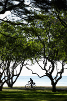 Man riding bike in park near ocean. - Yukmin