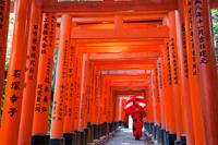 Woman in red Kimono holding red umbrella at Fushimi Inari Taisha Shrine,Tunnel of Torii Gates. - Travelasia