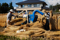 People working a rice threshing machine. Japan,Nagano Prefecture - Travelasia