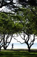 Man jogging under trees near ocean - Yukmin