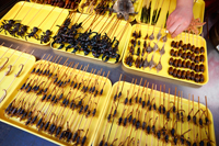 China,Beijing,Wangfujing Street,Snack Street Market selling Insects and Scorpians - Travelasia