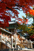 Korea,Gyeongju,Bulguksa Temple - Travelasia