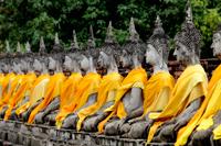 Stone Buddhas in a line at Wat Yai Chaya Mongkol Temple, Thailand - Alex Mares-Manton